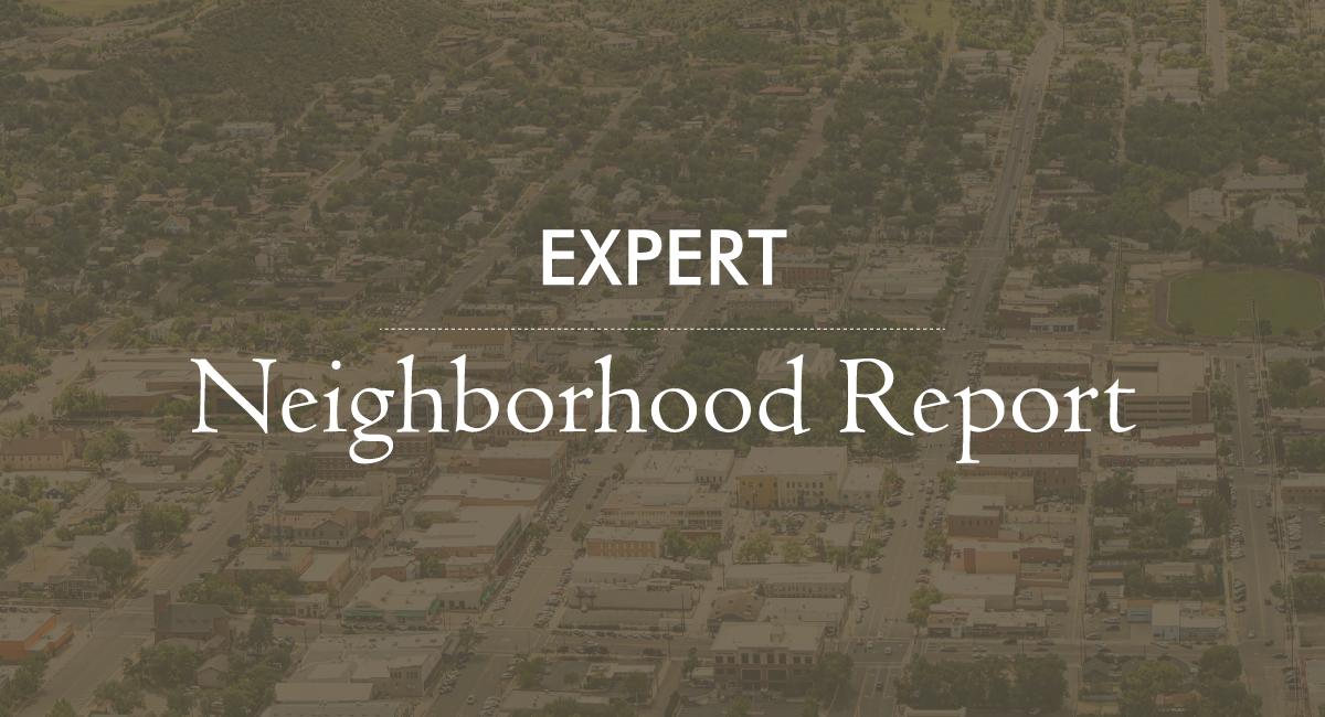 Local Neighborhood Report