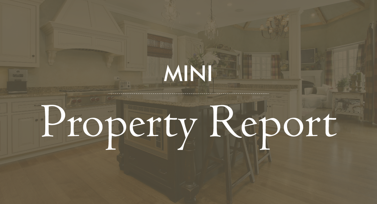 Property Report Snapshot